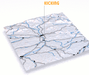 3d view of Kicking