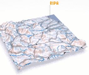3d view of Ripa
