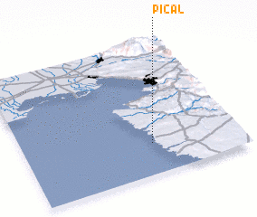 3d view of Pical