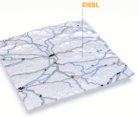 3d view of Riedl