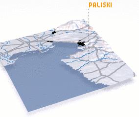 3d view of Paliski