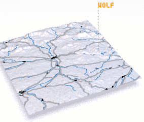 3d view of Wolf