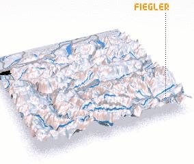 3d view of Fiegler