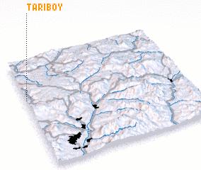 3d view of Tariboy