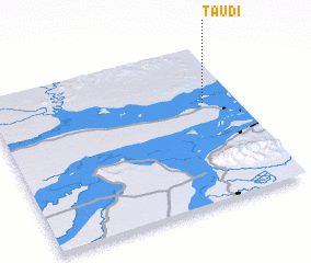 3d view of Taudi