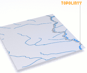3d view of Topolinyy