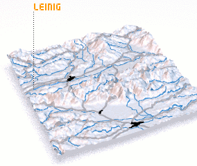 3d view of Leinig