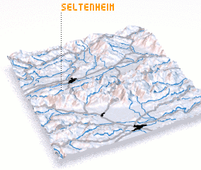 3d view of Seltenheim