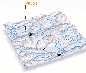 3d view of Pulst