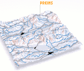 3d view of Preims