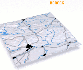 3d view of Monegg