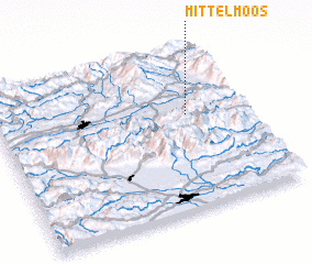 3d view of Mittelmoos