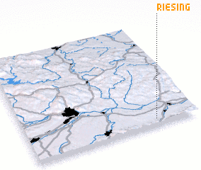 3d view of Riesing