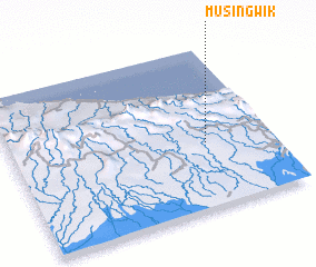 3d view of Musingwik