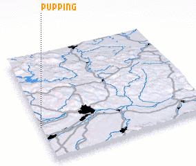 3d view of Pupping