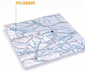 3d view of Feldbaum