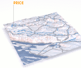 3d view of Price