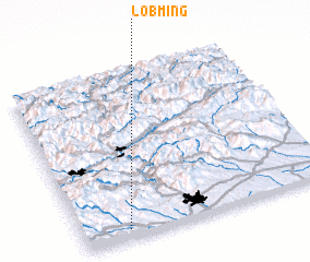 3d view of Lobming