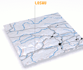 3d view of Losau