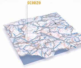 3d view of Scorzo