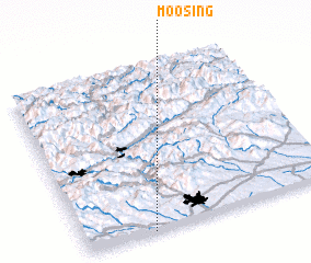 3d view of Moosing