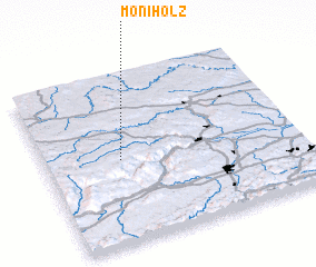 3d view of Moniholz