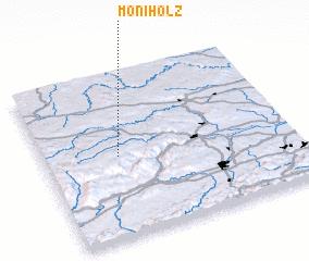 3d view of Moniholz