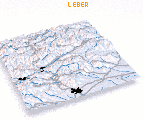 3d view of Leber
