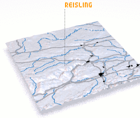 3d view of Reisling