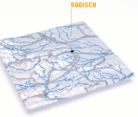 3d view of Radisch