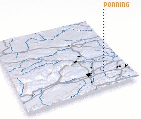 3d view of Pönning