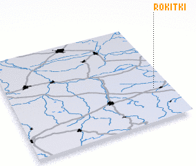 3d view of Rokitki