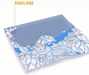 3d view of Pasiloke