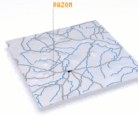 3d view of Pazom