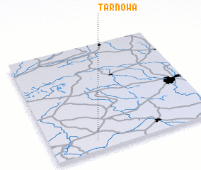 3d view of Tarnowa