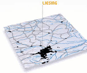 3d view of Liesing