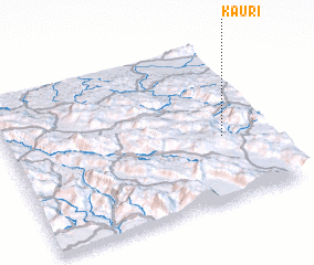 3d view of Kauri