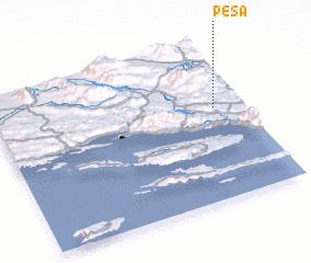 3d view of Peša