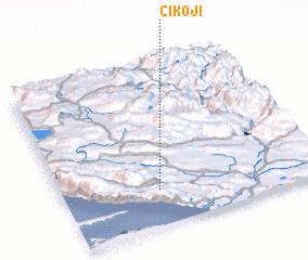3d view of Cikoji