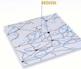 3d view of Brzózki