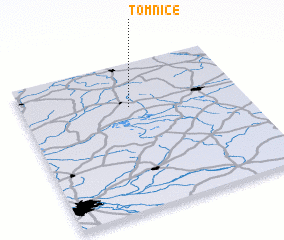 3d view of Tomnice