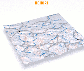 3d view of Kokori