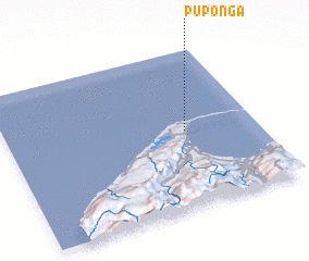 3d view of Puponga