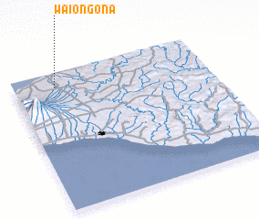 3d view of Waiongona