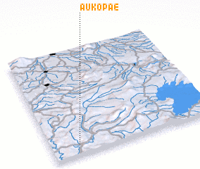 3d view of Aukopae