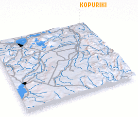 3d view of Kopuriki