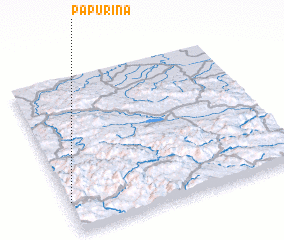 3d view of Papurina