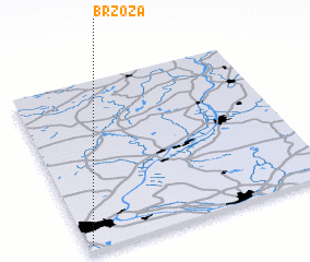 3d view of Brzoza