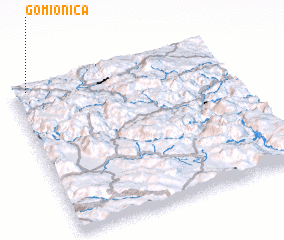 3d view of Gomionica
