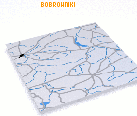 3d view of Bobrowniki